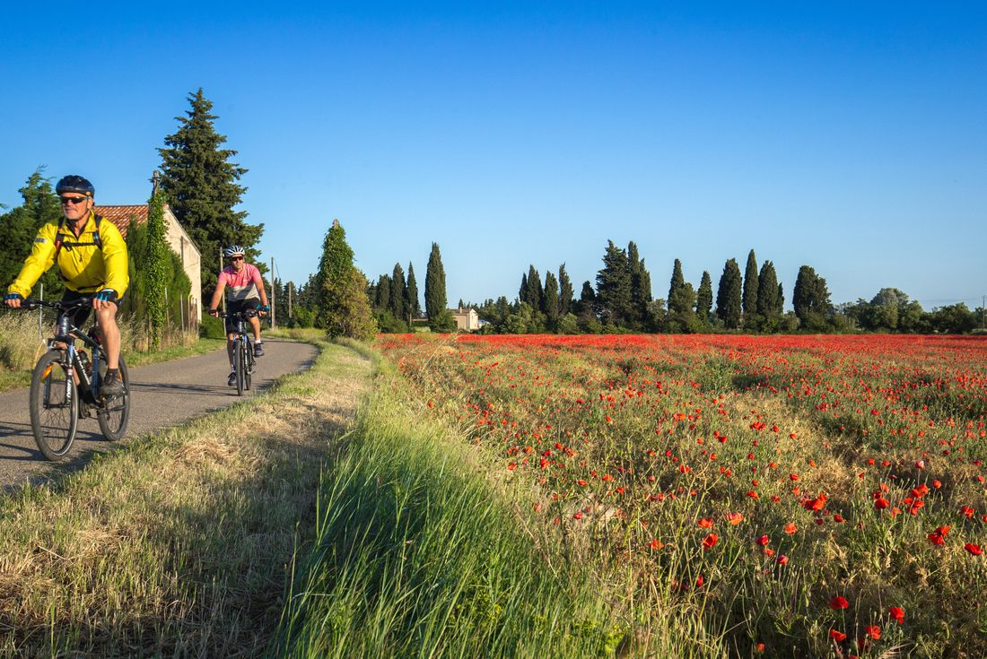 Cycle Provence